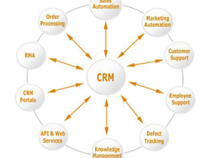 Reasons that Make Cloud-based ERP Solution a Better Choice